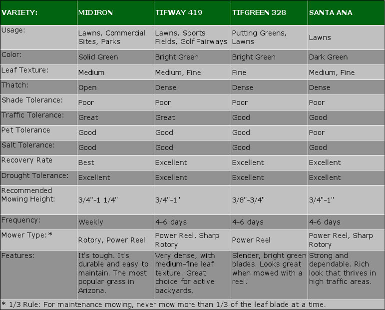 Southwest Sod Grass Comparison Chart