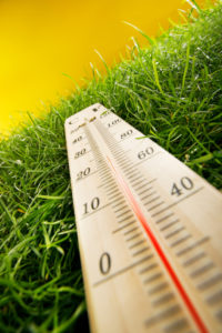 Spring Transition-thermometer on grass