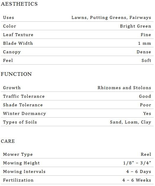 Tifgreen 328 Sod Specs